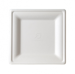 Medium Square Sugarcane  Plate - 8""